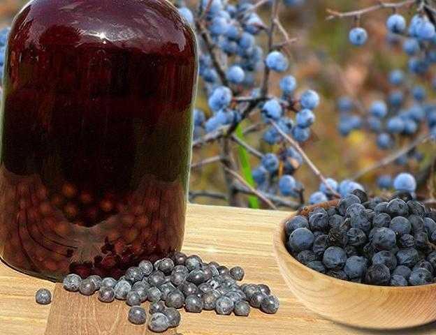 Рецепт приготовления домашнего вина из черемухи