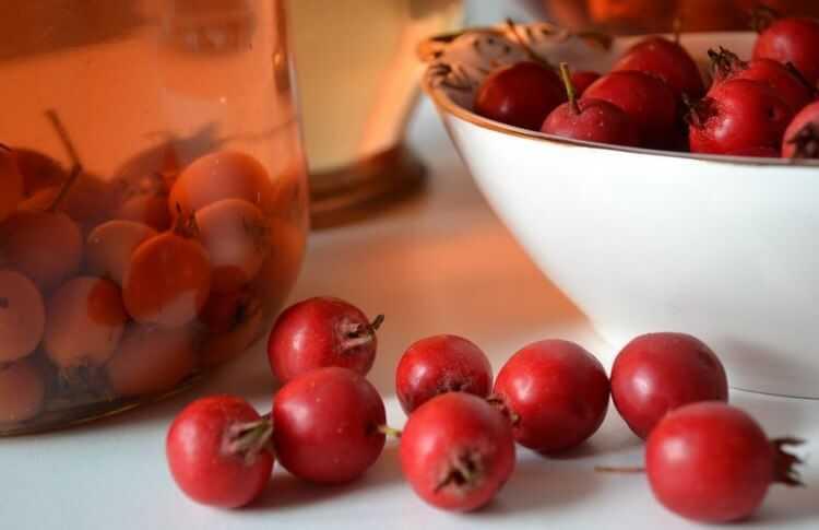 Настойка из боярышника в домашних условиях: 7 простых рецептов