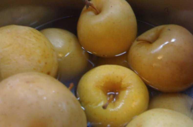 Моченые груши на зиму – какие брать плоды, как хранить. Рецепт с медом, брусникой, суслом, классический рецепт с горчицей, моченая груша-дичка.