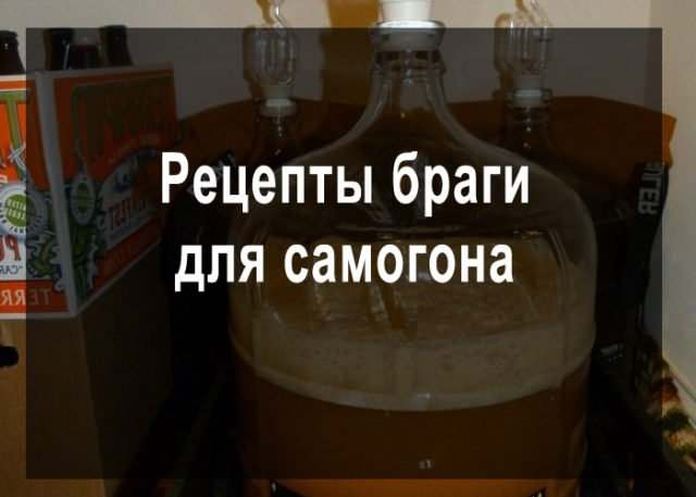 Самогон из тыквы: рецепт приготовления тыквенной браги